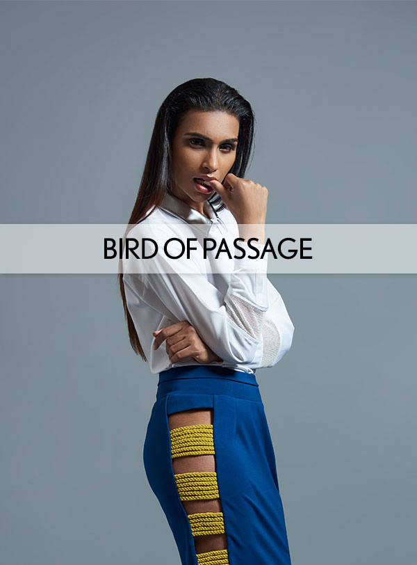 Collections--BIRD-OF-PASSAGE